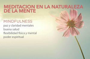 http://meditacionmindfulness.net